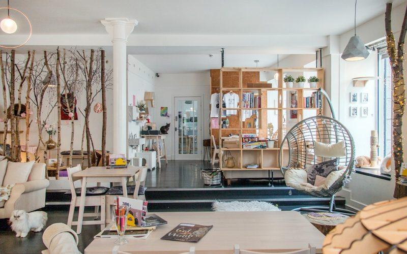 Doplňky do bytu, které promění váš interiér